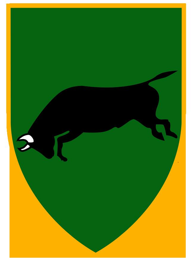 חטיבה 37-673 ראם