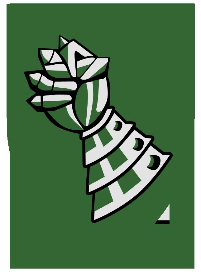חטיבה 205-514 אגרוף הברזל