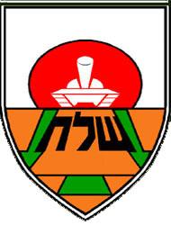 סמל גדוד 46