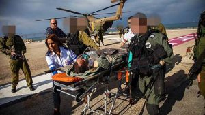 """התנהגותלא מפתיעה"""". סג""""ם צרפתי מגיע לטיפול בביה""""ח רמב""""ם.צילום: אבישג שאר-ישוב"""