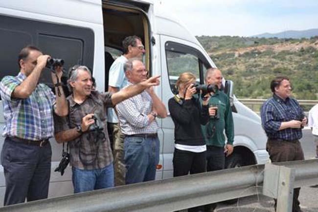 האורחים צופים ומצלמים