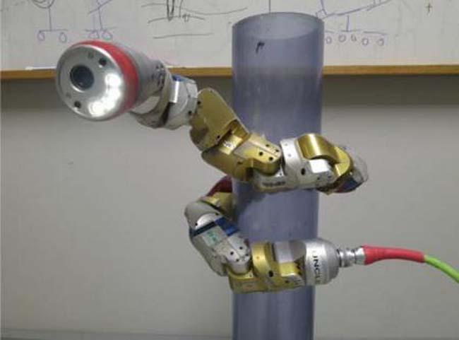 רובוט-נחש